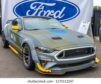ROYAL OAK, MI/USA - AUGUST 17, 2018: A 2019 Ford RTR Eagle Squadron Ford Mustang (XROK) at the Woodward Dream Cruise. Builder: Vaughn Gittin Jr.