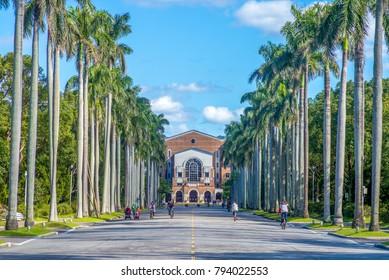 Royal Palm Boulevard in Taiwan University