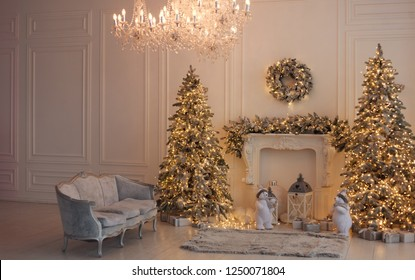 royal room with fire place. luxury soft sofa near chrismas tree. classic room decorated for new year