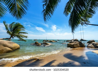 Royalty high quality free stock image of boats at coconut beach on Son island, Kien Giang, Vietnam. Near Phu Quoc island