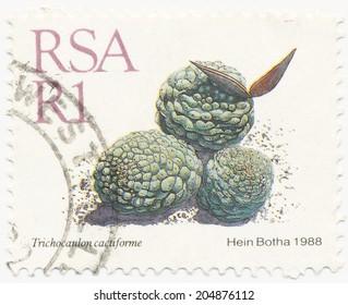RSA - CIRCA 1988: A stamp printed in RSA shows Trichocaulon cactiforme painted by Hein Botha, circa 1988