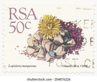 RSA - CIRCA 1988: A stamp printed in RSA shows Lapidaria margaretae painted by Hein Botha, circa 1988