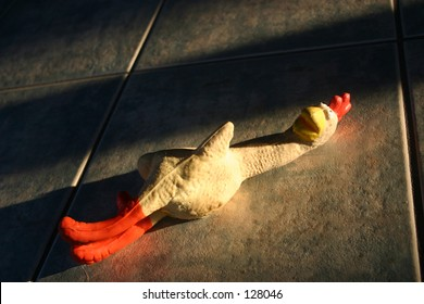 Rubber chicken squeeky toy on tile floor in late day lighting (a thanksgiving platter for your dog)