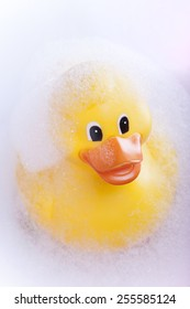 Rubber duck in the bath tub