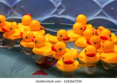 Rubber Duckies in a pool carnival game