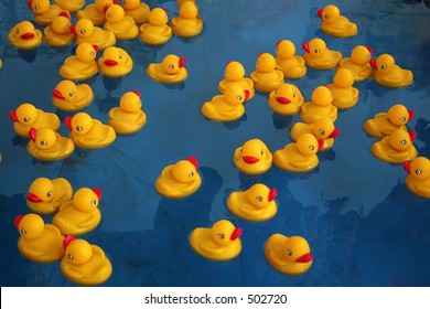 Rubber duckies in a pool at a carnival game.
