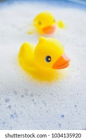 Rubber ducks in bubble bath
