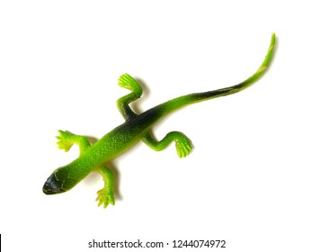 Rubber green lizard toy on white background.