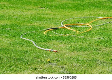 Rubber hose and green grass