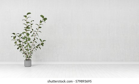 Rubber tree in front of a concrete wall 3d rendering