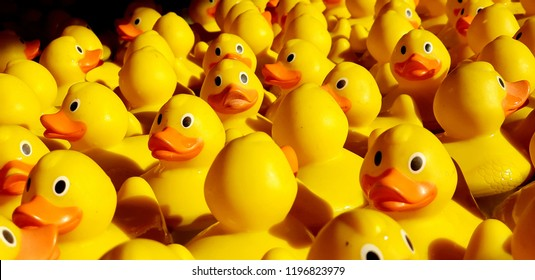 Rubber yellow duck