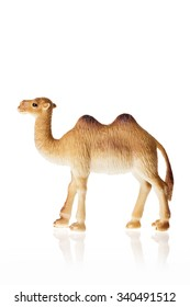 A rubber(plastic) toy of camel side view isolated white.