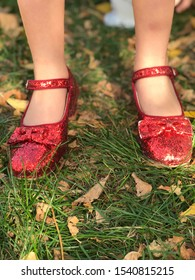 "Ruby red shoes. There is ""no place like home."" Halloween 2018."