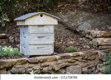 ruche maison cercle en bois miel maison ruche ruche skep osier panier de with ruche maison. Black Bedroom Furniture Sets. Home Design Ideas