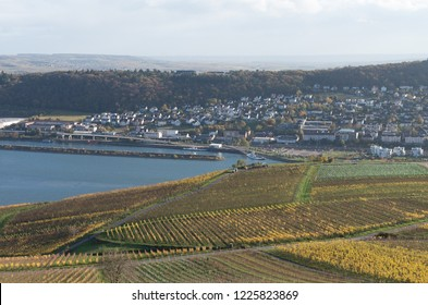 The Rudesheim am rhein Germany wine Symbole