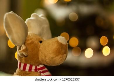 rudolph reindeer bokeh merry xmas