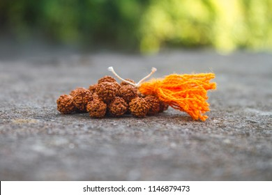 Rudraksh Beads Loose With Tassel Outdoors