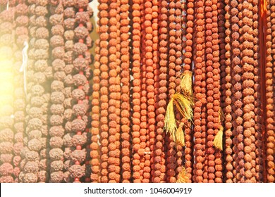 Rudraksha beads are hanging on the market. Background of the Rudraksha beads.
