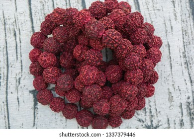 A rudraksha mala is the seed of the Eliocarpus ganitrus tree used as prayer beads in Hinduism especially Shaivism .
