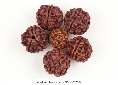 Rudraksha seeds.