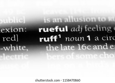 ruff word in a dictionary. ruff concept.