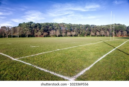 Rugby field in a sunny day