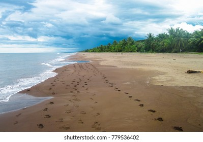 The rugged Caribbean coastline of northeast Costa Rica. Photographed in Tortuguero National Park.