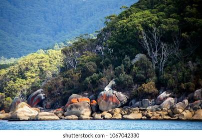 The rugged, granite strewn coastline of Victoria's famous tourist destination, Wilsons Promontory National Park in South Gippsland, Australia.