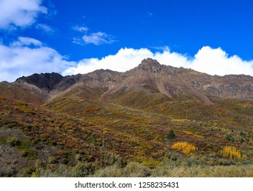 A rugged mountain in Denali National Park, Alaska, in late autumn just before winter with trees and tundra changing colors