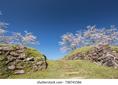 Ruin of a castle in spring. Mie prefecture, Japan