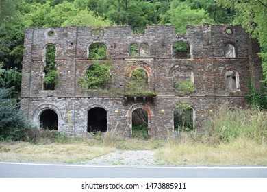 ruin of former brewery with trees growing on the walls