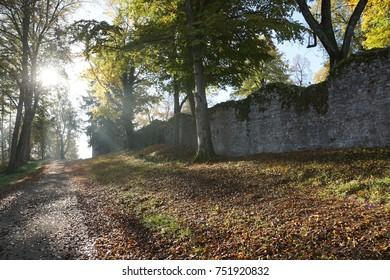Ruin Honburg in Tuttlingen in Germany