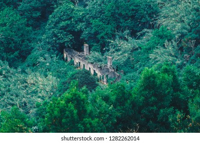 Ruin in the wood, Sao Miguel Island, Azores, portugal