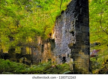 a ruined tall stone building surrounded by bright vibrant dense green woodland with trees growing though the floor and ferns on the ground with bright sunlight reflected on the walls