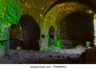 Ruins of an ancient abandoned church. Crypt, moss