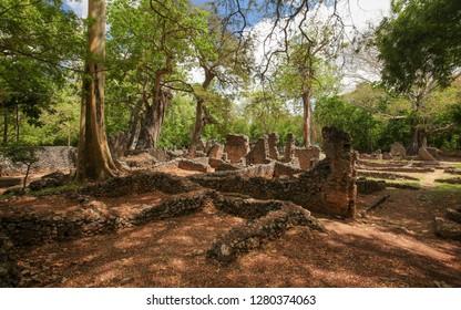 Ruins of ancient city Gede in African jungle near Watamu, Kenya.