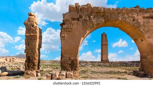 Ruins of the ancient city of Harran - Urfa , Turkey (Mesopotamia) - Old astronomy tower