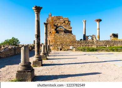 Ruins in ancient old roman city Volubilis, Unesco, Meknes, Morocco, Africa