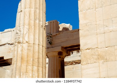ruins of the Greek Acropolis