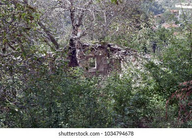 the ruins of a house overgrown with the trees, Greece