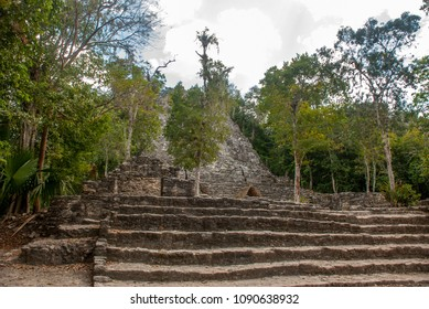 Ruins of Mayan pyramid at jungles. Coba. Mexico, Yucatan.