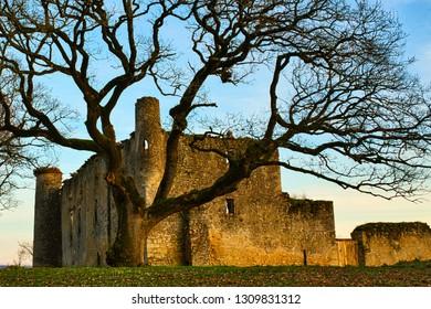 Ruins of Montfa Castle