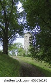 Ruins of the Niederhaus