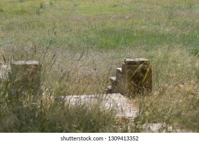 ruins in open countryside