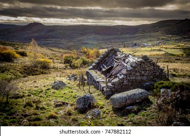 the ruins of a stone house in the Cévennes mountains in autumn