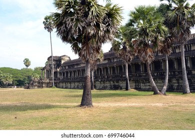 Ruins, trees. Ancient city of Angkor. Cambodia.
