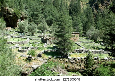 Ruins of the village of Samaria, heart of the Samaria Gorge between Agia ROumeli and Omalos (Crete, Chora Sfakion, Greece) during a hike on the GR E4.