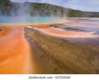 "Run off from the Grand Prismatic Spring in Yellowstone National Park. The unusual coloration of the microbial ""mats"" depends on the combination of chlorophyll and carotenoids and temperature."