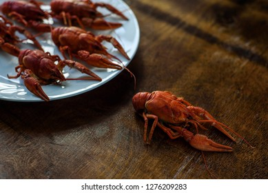 Runaway lobsters on the table