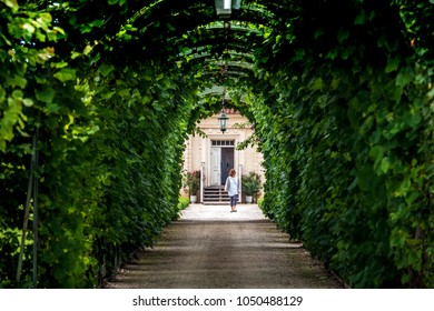 Rundale, Latvia - July, 2017: Green garden arches and path. Landscape gardening design in Rundale palace, Latvia